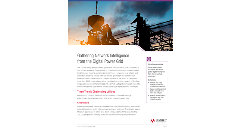 Gathering Network Intelligence from the Digital Power Grid