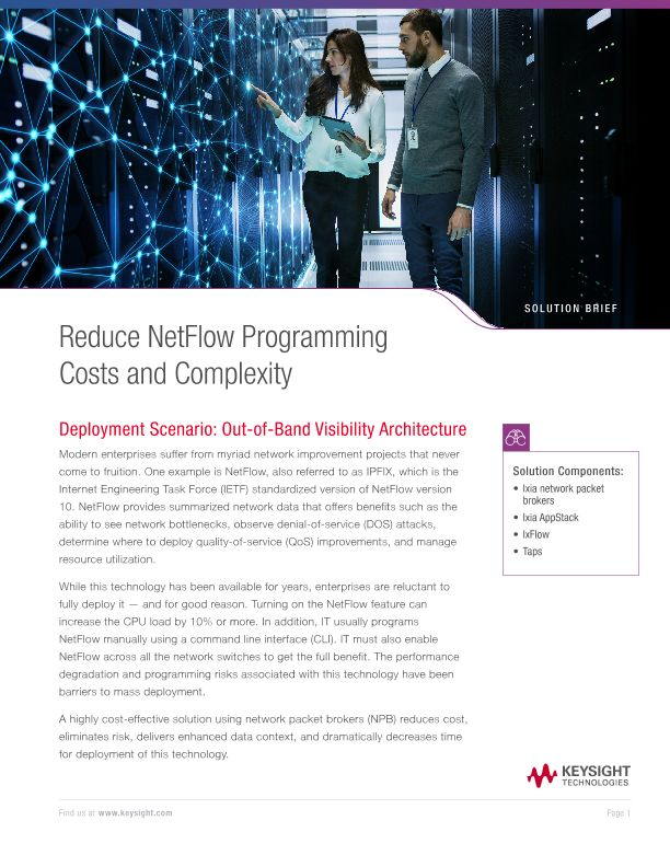 Reduce NetFlow Programming Costs and Complexity