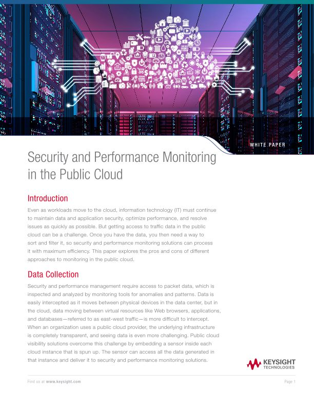 Security and Performance Monitoring in the Public Cloud