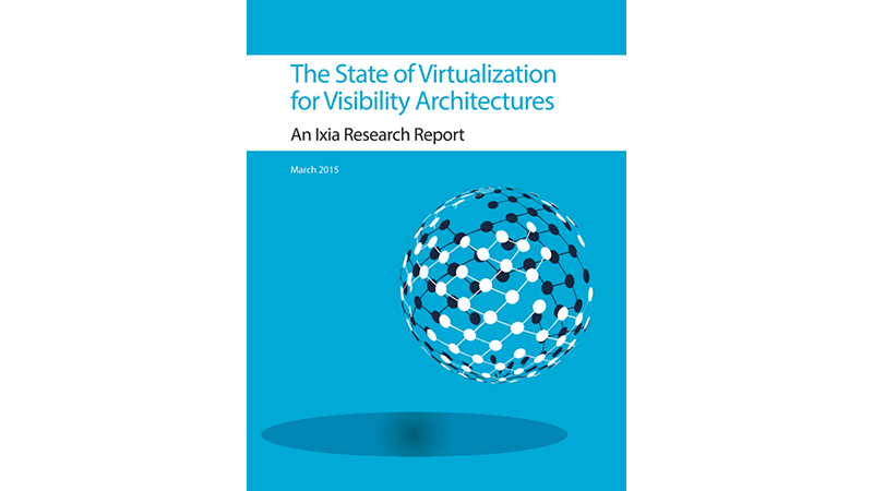 The State of Virtualization for Visibility Architectures