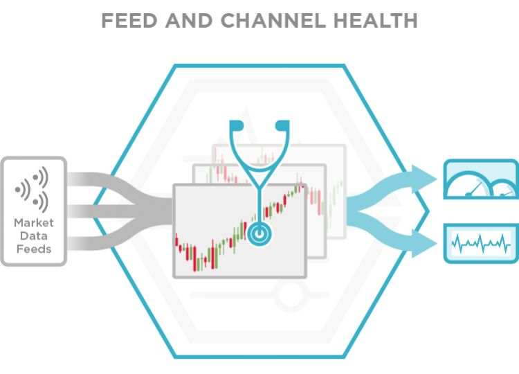 Feed and Channel Health
