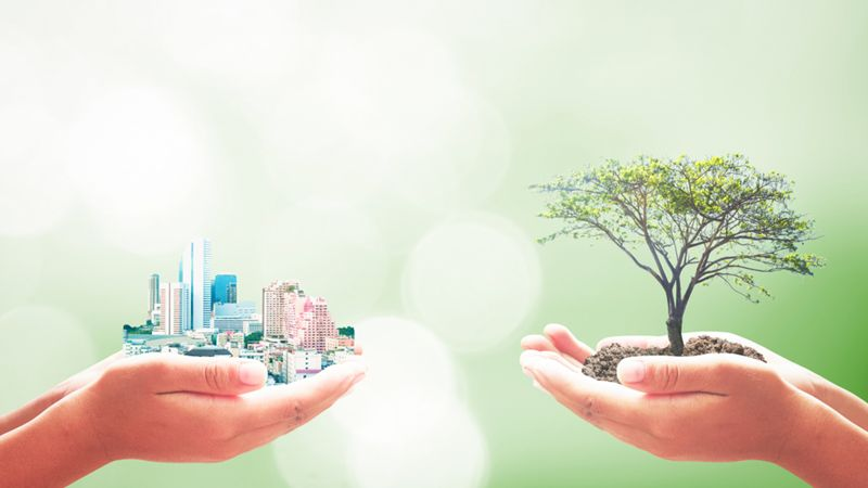 Go Green: Reduce Your Product's Power Consumption