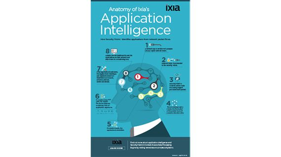 Anatomy of Ixia's Application Intelligence